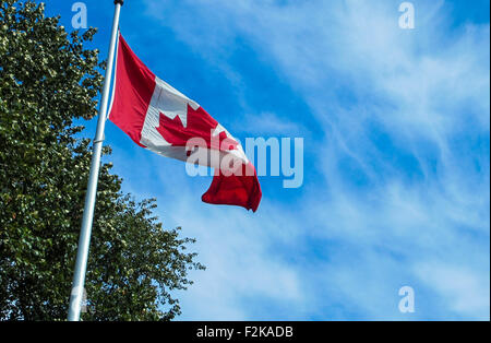 Oh Canada. Canadian flag flutters in the breeze. - Stock Photo