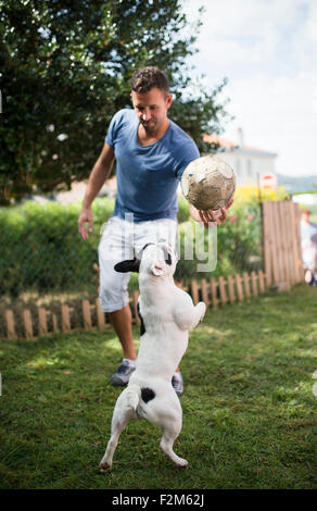 Man with a ball playing with a French bulldog - Stock Photo