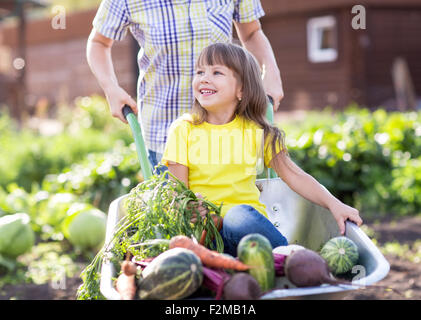 little girl inside wheelbarrow with vegetables in the garden - Stock Photo