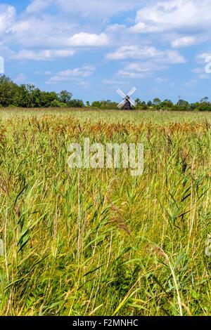 Windmill at Wicken Fen, a wetland nature reserve near Wicken, Cambridgeshire, England, UK - Stock Photo