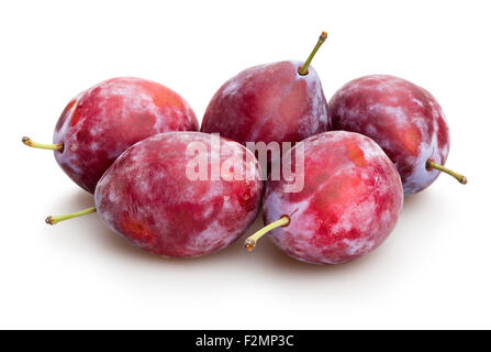 red plum isolated - Stock Photo