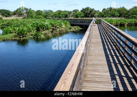 Florida FL South Delray Beach Wakodahatchee Wetlands nature preserve raised boardwalk water - Stock Photo