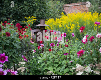 Chenies Manor Kitchen garden with dahlias, golden rod and tin man scarecrow sculpture in late summer. Colourful - Stock Photo