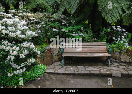 Victorian bench at garden. - Stock Photo