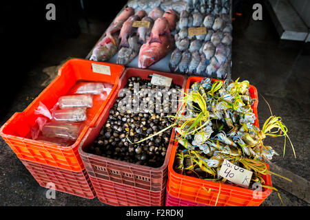 Wide variety of fish and seafood (blue crabs, mussels,…) is seen for sale at the seafood and fish market in Veracruz, - Stock Photo