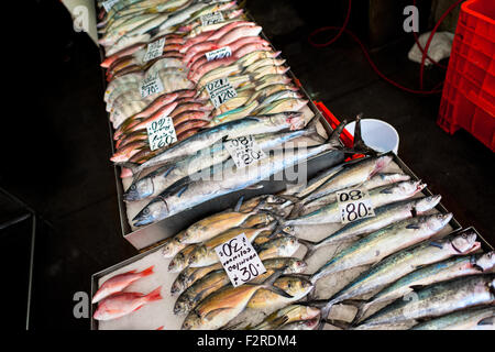 Wide variety of fish (bluegills, cojinua,…) is seen for sale at the seafood and fish market in Veracruz, Mexico. - Stock Photo