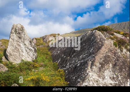 The Caha Mountains, near Glengarriff, Beara, County Cork - Stock Photo