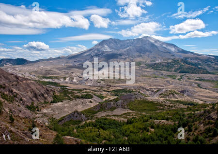 Mount Saint Helens in the summer - Stock Photo