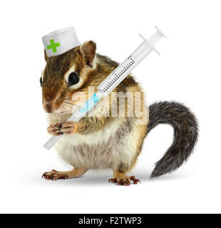 Veterinary concept, funny chipmunk with syringe isolated on white - Stock Photo