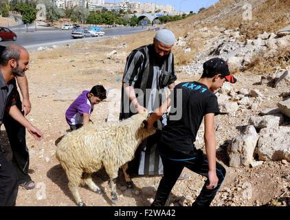 Amman, Jordan. 24th Sep, 2015. People prepare to slaughter a sheep during the Eid al-Adha festival in Amman, Jordan, - Stock Photo