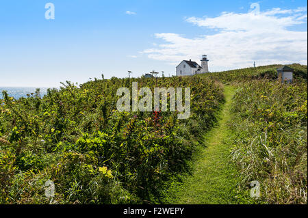 lighthouse and guardian house on top of the hill  in Longue-Pointe-de-Mingan, Quebec, Canada - Stock Photo