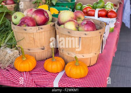 Apples and Pumpkins at the local food market (Sunday farmers market in Baie Saint Paul, Quebec, Canada) - Stock Photo