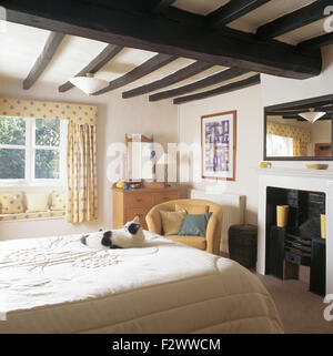 Black+white cat sitting on on bed in cottage bedroom with black painted rustic beams and a mirror above fireplace Stock Photo