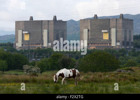 A general view of the disused Magnox Trawsfynydd nuclear power station in Gwynedd, Wales. - Stock Photo