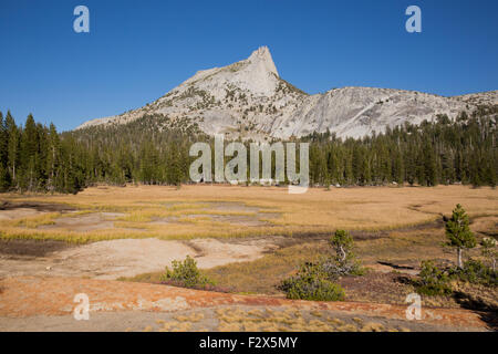 Cathedral Peak and meadows from Cathedral Lakes, Yosemite National Park - Stock Photo