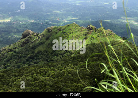Green Hill in morning - Stock Photo