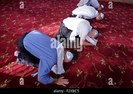 Karaite Jews bowing on the knees and prostrate during prayer in a Karaite synagogue in the city of Ramle or Ramleh - Stock Photo