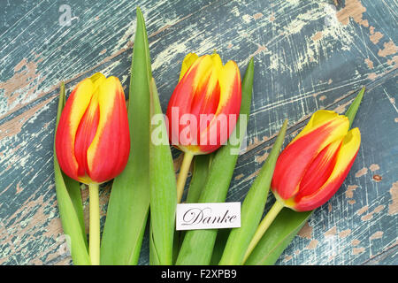 Danke (which means thank you in German) card with red and yellow tulips - Stock Photo