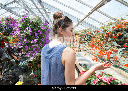 Young woman looking at colourful flowering plants in a garden centre. - Stock Photo