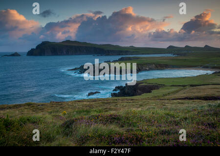 Dawn view over Ballyferriter Bay, Sybil Point and the peaks of the Three Sisters, Dingle Peninsula, County Kerry, - Stock Photo