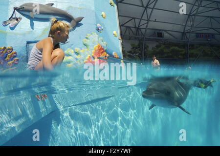 Alushta, Russia. 24th Aug, 2015. A dolphin swimming in the Akvarel dolphinarium. © Artyom Korotayev/TASS/Alamy Live - Stock Photo