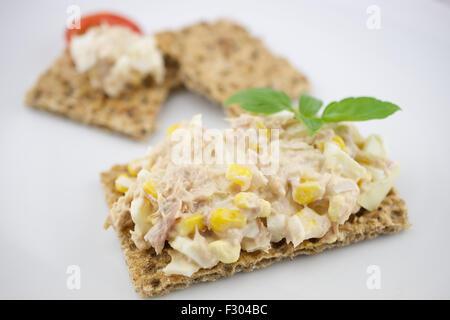 Multigrain crisp bread and tuna salad - Stock Photo