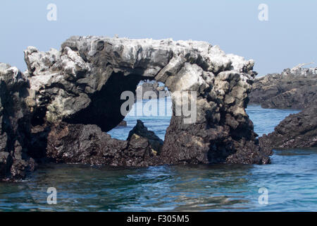 Los Tunneles (lava formations between mangroves and open sea), Isabela Island, Galapagos Islands - Stock Photo