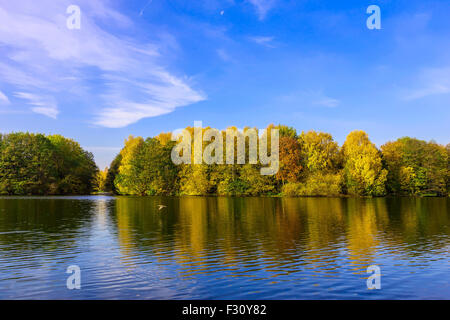 Scenery with Colourful Trees, Cloudy Blue Sky Reflected in the Lake in Autumn - Stock Photo