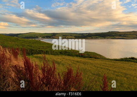 Poppit Sands and the Teifi estuary viewed from a wheat field - Stock Photo