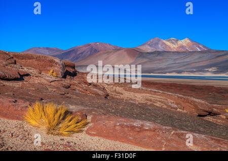 Las Piedras Rojas. Salar de Aguas Calientes (Los Flamencos National Reserve) - Stock Photo