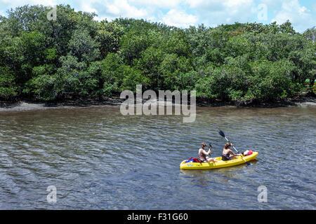 Florida, FL, South, North Palm Beach, John D. MacArthur Beach State Park, Lake Worth Lagoon, kayak, kayaker, kayaking, - Stock Photo