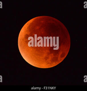 Supermoon, Moon during Lunar eclipse - Stock Photo