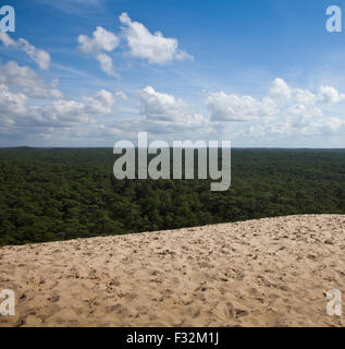 Dune of Pilat, overlooking the forest. France. - Stock Photo