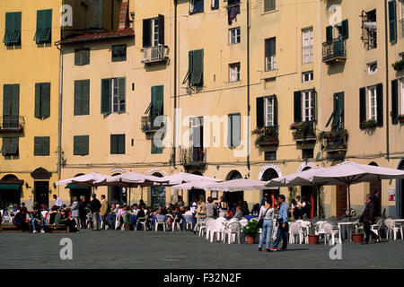 lucca, tuscany, italy, cafes in piazza del mercato (built on the foundations of the roman amphitheatre) - Stock Photo