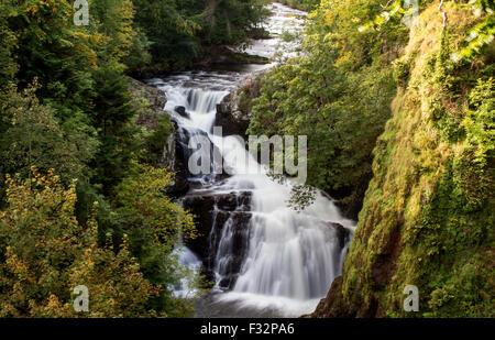 Reekie Linn, Glen Isla, Angus, Scotland, UK, 28th September 2015. UK Weather: Late Autumn afternoon at Reekie Linn - Stock Photo