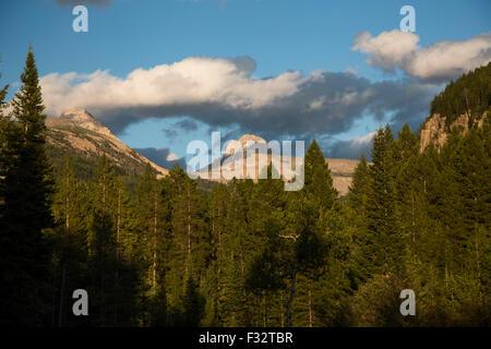 Driggs, Idaho - The Jedediah Smith Wilderness and the Teton mountain range. - Stock Photo