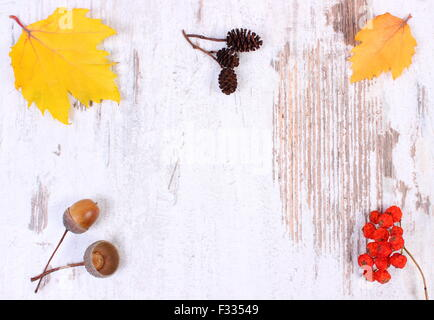 Autumn decoration and copy space for text on old rustic wooden background, yellow leaves, red rowan, acorn and alder - Stock Photo