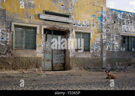 Crumbling pastel yellow house in ruins with a dog sitting in front of it in Boa Vista on the island republic of - Stock Photo