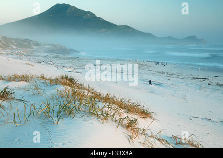cormorants and gulls on Platboom Beach and the Cape of Good Hope, Cape Point, South Africa - Stock Photo