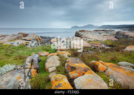 the Cape of Good Hope at Black Rocks, Cape Point, South Africa - Stock Photo
