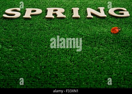 The word spring written on green background - Stock Photo