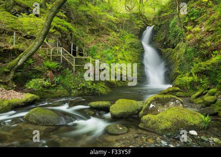 Dolgoch Falls, Gwynedd, Wales, UK - Stock Photo