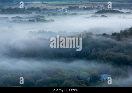the Isle of Purbeck near Corfe Castle in the mist at dawn, Dorset, England, UK - Stock Photo