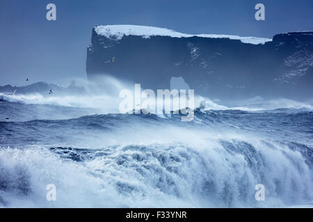 waves breaking on Reynisfjara with Dyrhólaey beyond, Iceland - Stock Photo