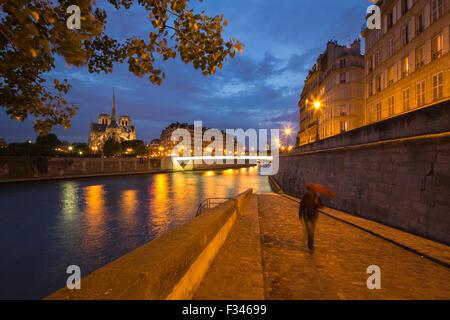 Notre-Dame Cathedral and the Île de la Cité from Ile St Louis at night, Paris, France Stock Photo