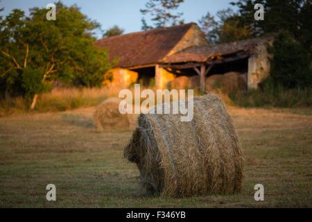 hay bales in a field near Beaumont du Périgord, Pays de Bergerac, Dordogne, Aquitaine, France - Stock Photo