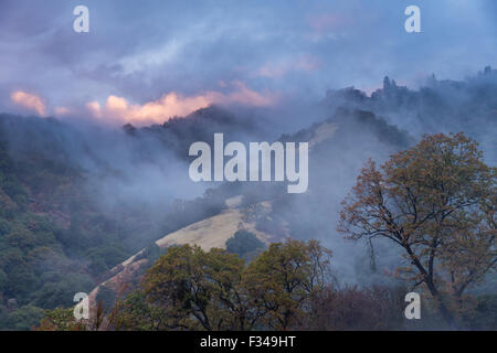 mist after a rain shower in the Kaweah Valley, Sequoia National Park, California, USA - Stock Photo