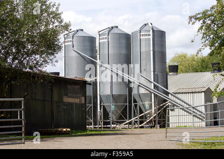 Feed grain silos on large industrial chicken farm - Stock Photo