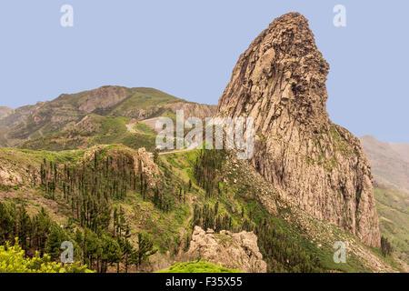 Garajonay National Park  La Gomera Canary Islands Spain - Stock Photo