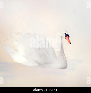 Digital Painting of White Swan - Stock Photo